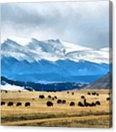 Buffalo Herd Painterly Canvas Print