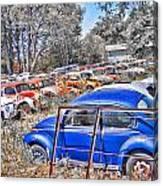 Bug Yard Canvas Print