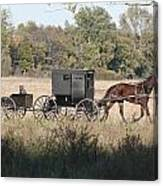 Buggy And Wagon Canvas Print