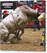 Bull 1 - Cowboy 0 Canvas Print