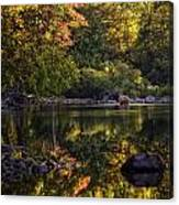 Bull Elk In Buffalo National River In Fall Color Canvas Print