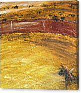 Bull-fights Canvas Print