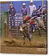 Bull Rider 1 Canvas Print