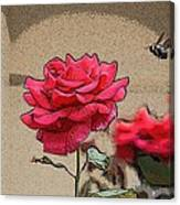 Bumble Bee And Rose Canvas Print