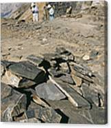 Burgess Shale Fossil Quarry Canvas Print