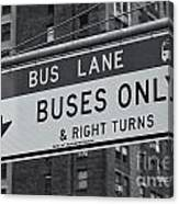 Buses Only II Canvas Print