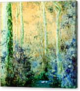 Bush Trail At Sunrise Canvas Print