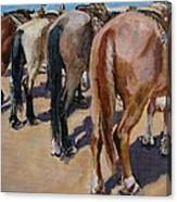 Butt A Horse Of Course Canvas Print