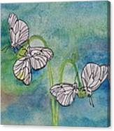 Butterflies Hanging Out Canvas Print