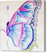 Butterflly Print Canvas Print