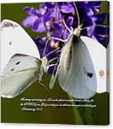Butterfly - Dueteronomy 31 6 Canvas Print