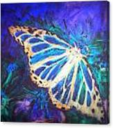 Butterfly Beauty 2 Canvas Print