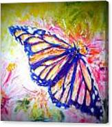 Butterfly Beauty 3 Canvas Print