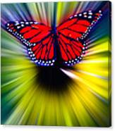 Butterfly Fly Canvas Print