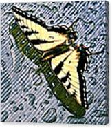 Butterfly In Rain Canvas Print