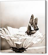 Butterfly On Flower Bw Canvas Print