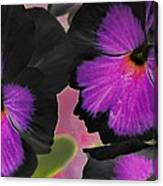 Butterfly Pansies Canvas Print