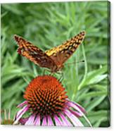 Butterfly Pitstop Canvas Print