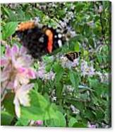 Butterfly Reflection Canvas Print