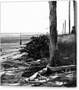 Bwhurricane Damage Canvas Print