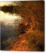 By The Evening's Golden Glow Canvas Print