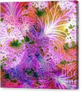 Cabbage Moon Canvas Print