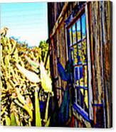 Cactus Reflection Canvas Print