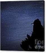 Cactus Wren In The Night Canvas Print