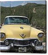 Caddy In The Desert Canvas Print