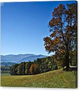 Cades Cove Landscape Canvas Print