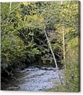 Cahaba River Shadows Canvas Print