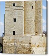 Calahorra Tower In Cordoba Canvas Print
