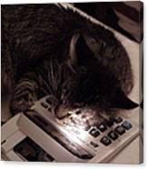 Calculator And Nightlite Canvas Print