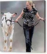 Calf Competition Canvas Print