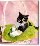 Calico Kitty In Basket Canvas Print