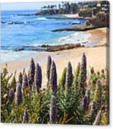 California Coast Flowers Photo Canvas Print