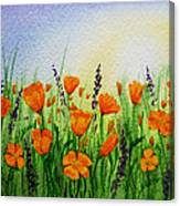 California Poppies Field Canvas Print