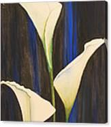 Callis From The Beach Canvas Print