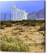 Calm Wind Palm Springs Canvas Print