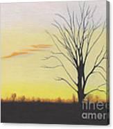 Calming Canvas Print