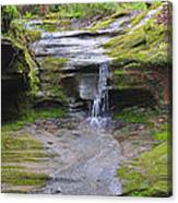 Camusfearna Gorge 1 Canvas Print