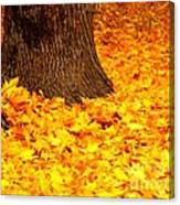 Candycorn Leaves Canvas Print