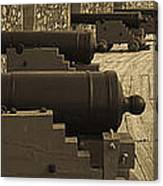 Cannons At Louisberg Fortress Canvas Print