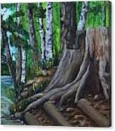 Canoe Landing Lake 18 Canvas Print