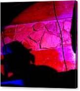 Cantante Obscuridad Canvas Print