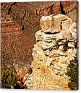 Canyon View V Canvas Print