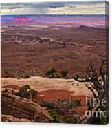 Canyonland Overlook Canvas Print