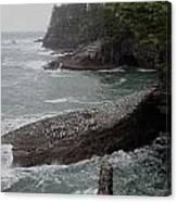 Cape Flattery Shoreline Canvas Print