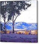 Caperty Valley Australia Canvas Print