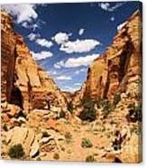 Capitol Reef Cohab Canyon Canvas Print